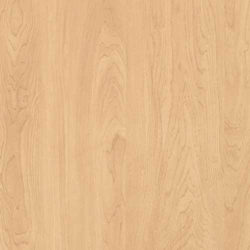 4ME27 Kensington Maple