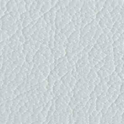 96 Arctic White