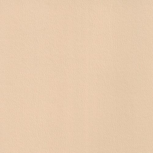 IND-8606 Camel