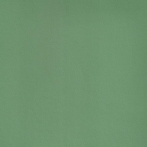 IND-8621 Leaf Green