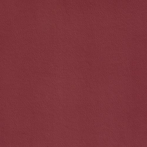 IND-8631 Raspberry