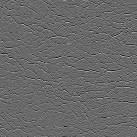 NS Gray