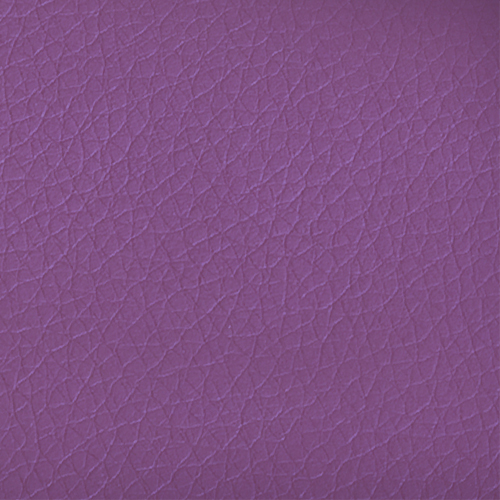 NT Purple