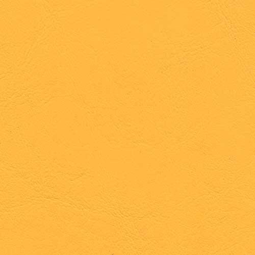 PV119 Sunflower