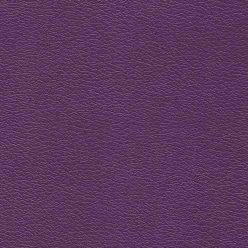 PV766 African Violet