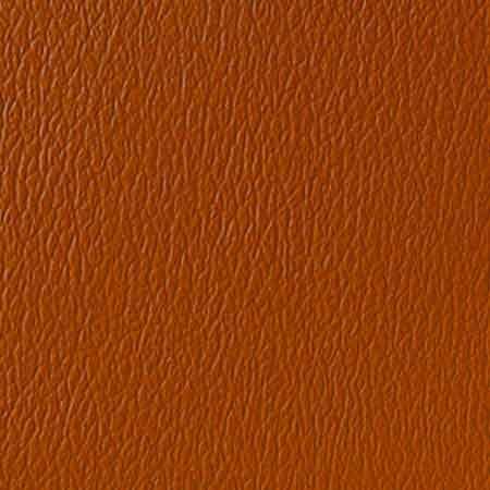 US 377 Cinnamon