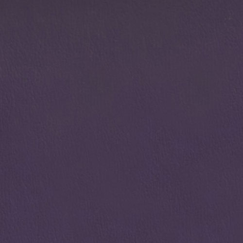 OLY365 Purple Velvet