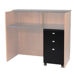 Takara Belmont Custom Express Plus SL140 Rollabout Storage Cabinet