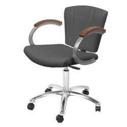 Collins 9741 Vanelle SA Task Chair w/ casters & gas lift