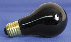 YCC FH250B Black Light Bulb for FH 250B