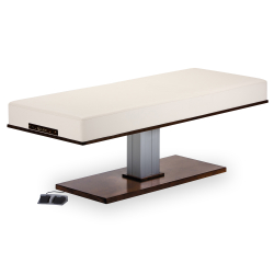 Living Earth Crafts Pedestal Flat Massage Top Electric Lift Table